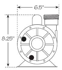 Waterway Iron Might Circulation Pump
